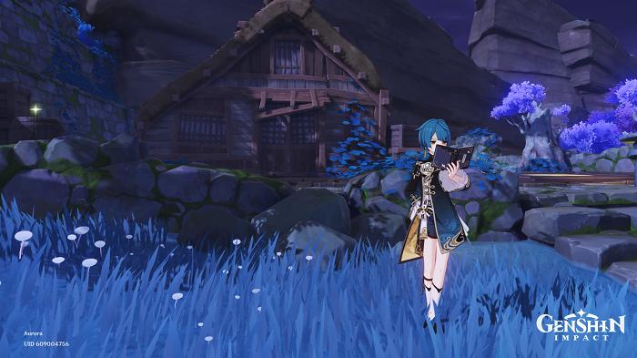 Genshin Impact Relics of Seirai Quest Guide
